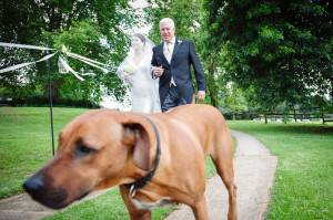 bride going down the aisle with dog