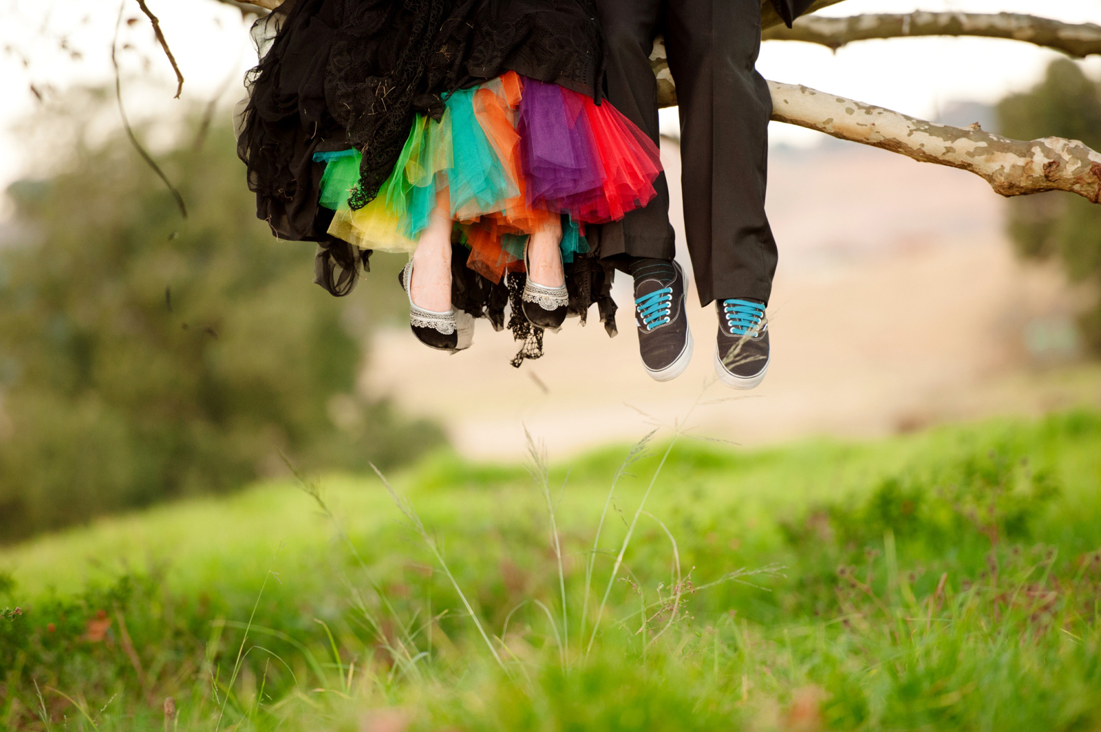 bride and groom in a tree