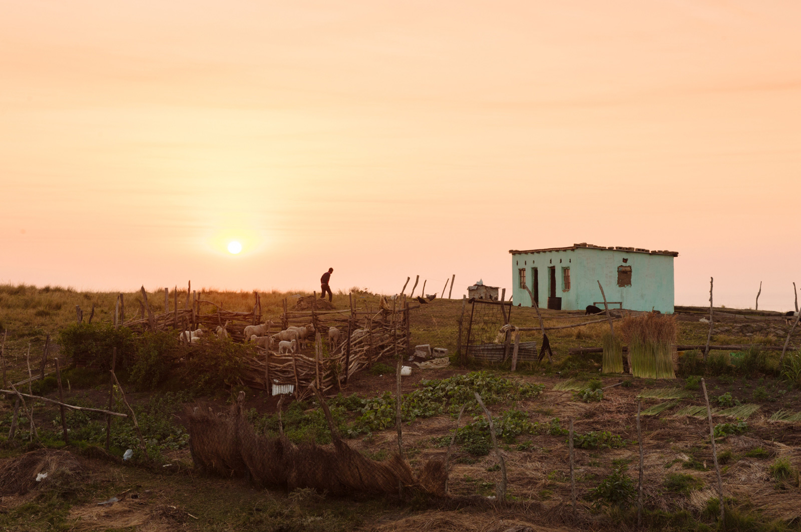 african housing