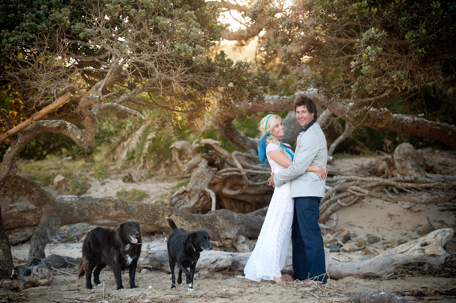 bohemian beach wedding with dogs