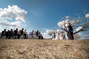 Wedding in game park under a tree
