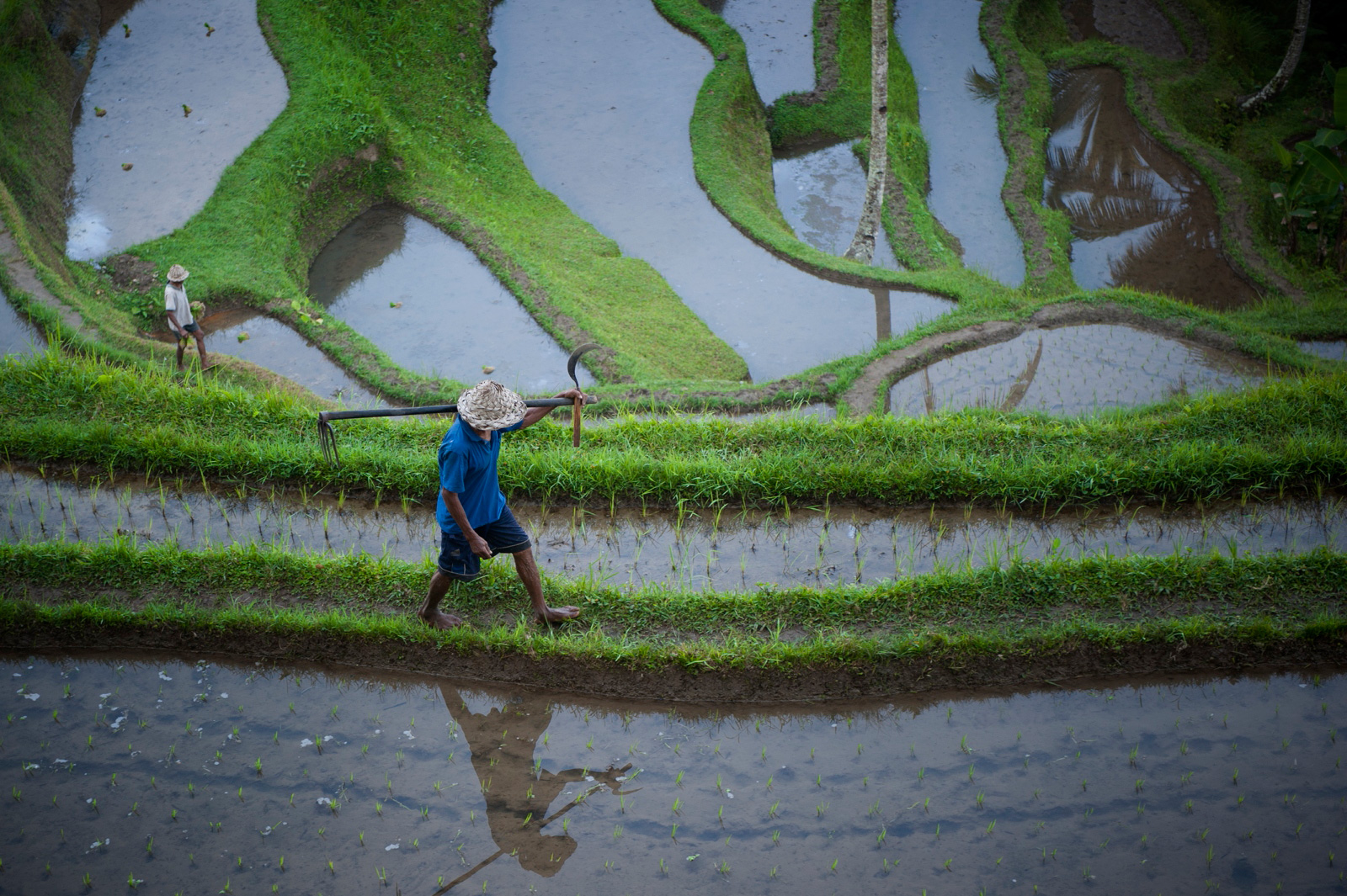 Bali-Ubud-South-African-Travel-Photographer-Jacki-Bruniquel-001