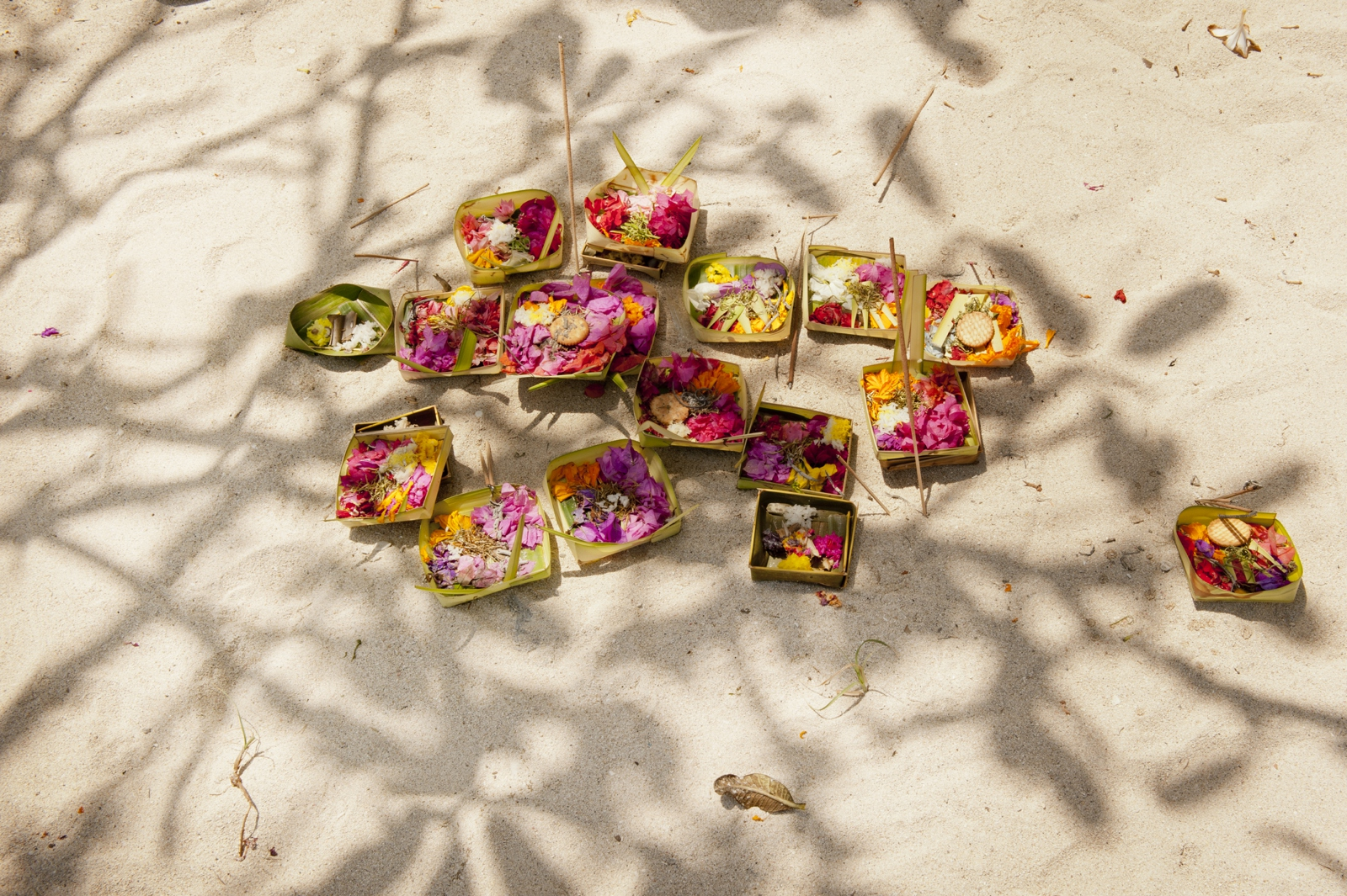 Balinese offerings with frangipani shadow