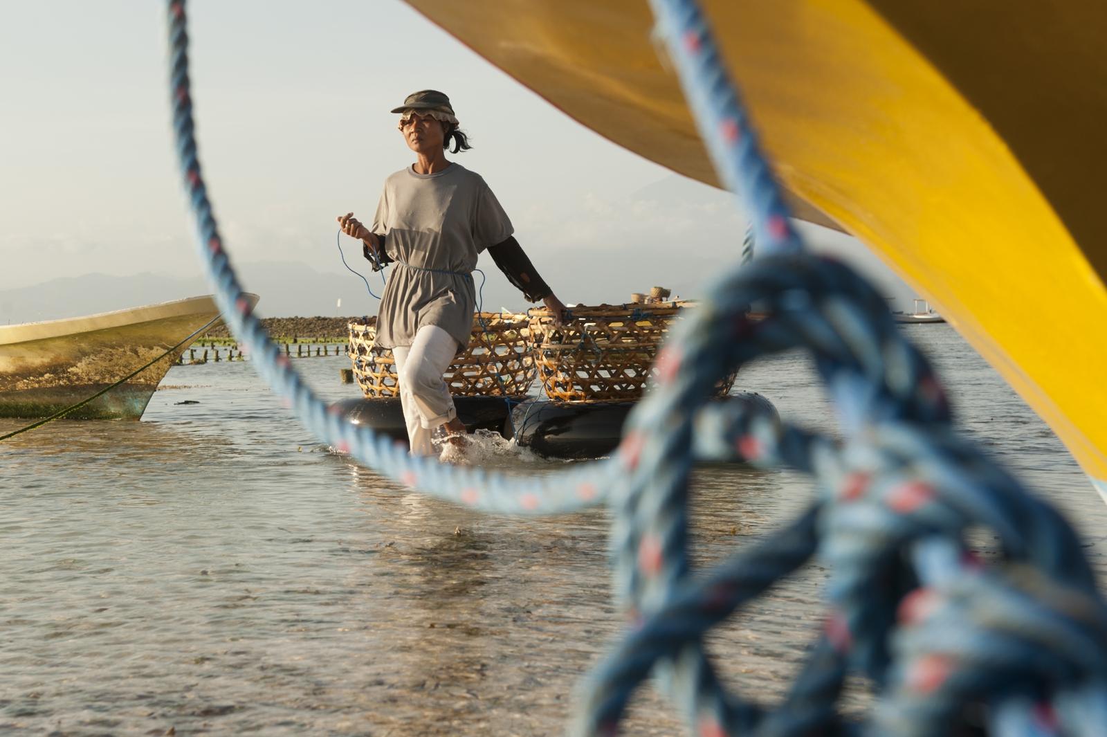 Seaweed farmer with boat Nusa Lembongan