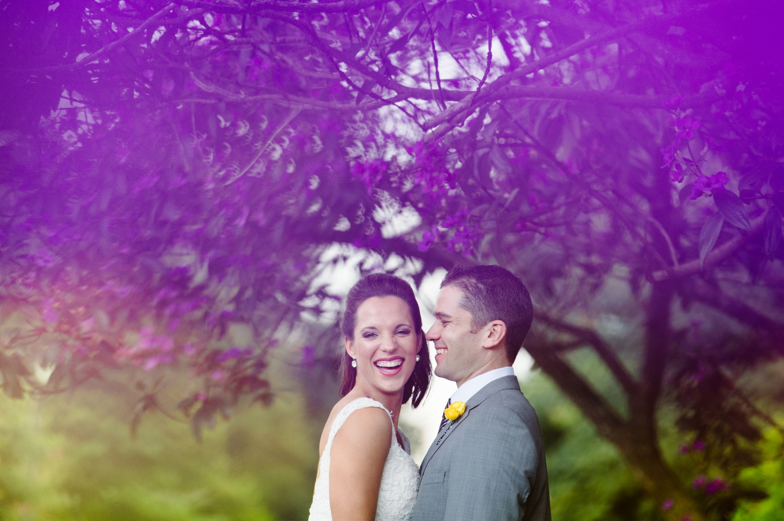 Bride and Groom under Jacaranda Tree