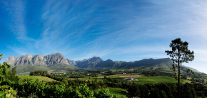 Zorgvliet Wine Farm