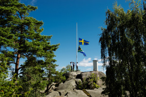 South African and Swedish flags