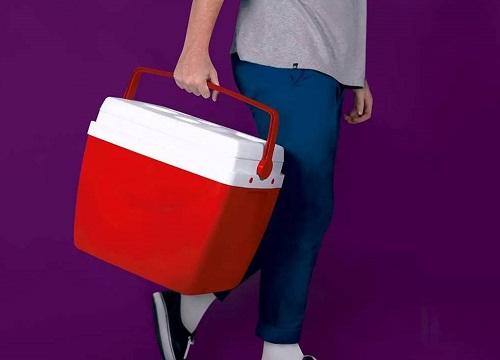 carnaval-cooler-caixa-termica