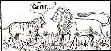 lion3.jpg (24877 bytes)