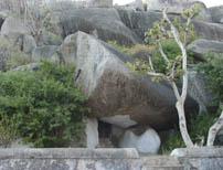 Aacharya Vidhyasagarji Maharaj did Sandya in this Cave