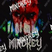 http://www.wix.com/mindkeygraphics/mindkey-graphics