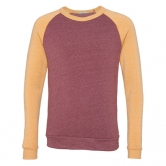Color-Block Champ Sweatshirt