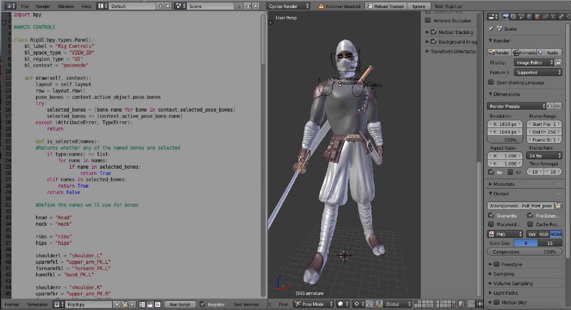 costumRigScript01.jpg