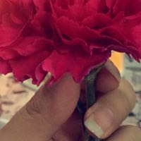 Manar_990