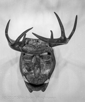 CSULB_Art_Galleries_Mask_Show_early_1970s_188