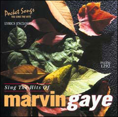 Sing The Hits of Marvin Gaye