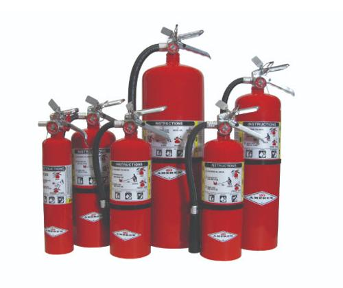 Amerex ABC Fire Extinguisher - 10 lb