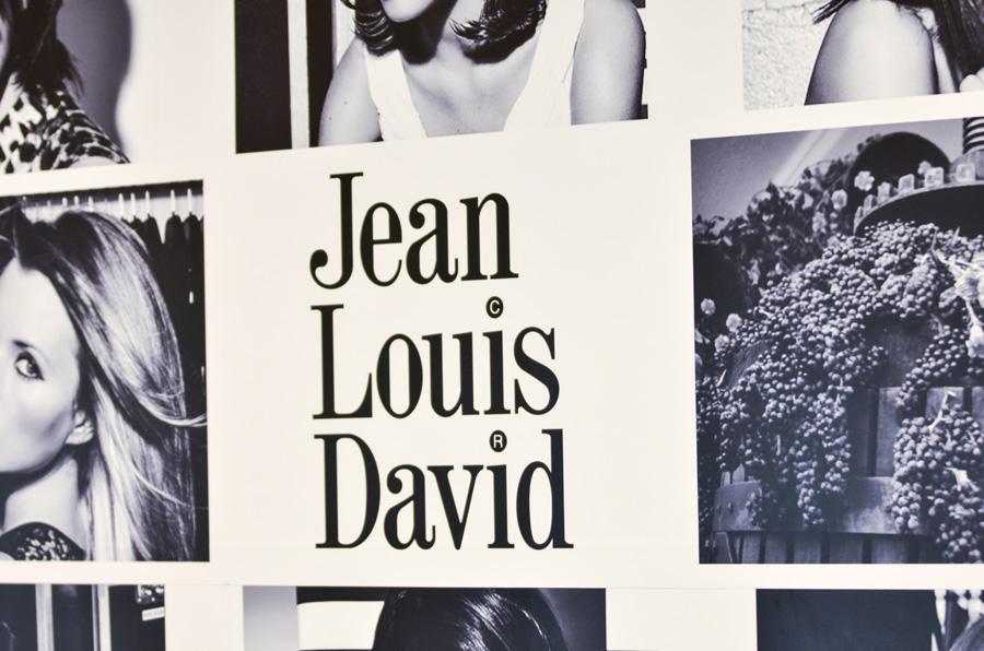 Jean Louis David C.C Los Valles