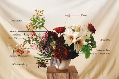 Floral Encyclopedia with Moon Canyon Design: Fall Blooms
