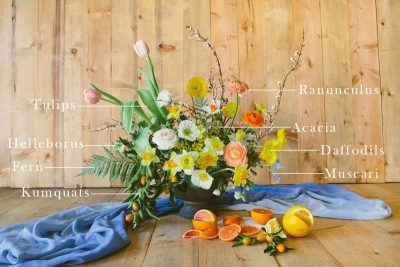 Floral Encyclopedia: A Citrus-Inspired Arrangement