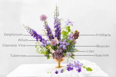 Floral Encyclopedia: A Springtime Arrangement