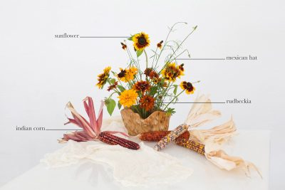 Floral Encyclopedia with Moon Canyon: An Indian Summer Display