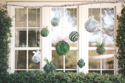 Floral Arrangements with Bloom & Plume: Live Holiday Ornaments