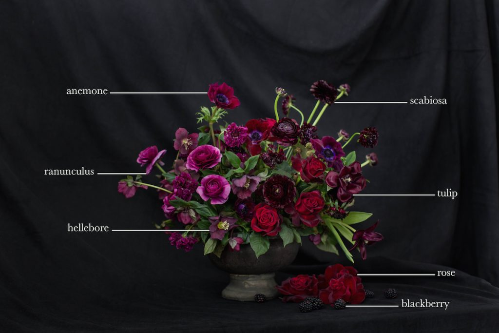 Moon Canyon's Floral Encyclopedia: Valentine's Day Edition