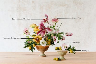 Floral Encyclopedia with Moon Canyon: A Winter Citrus Arrangement