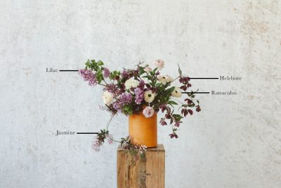 Floral Encyclopedia with Moon Canyon: A Fragrant Spring Bouquet