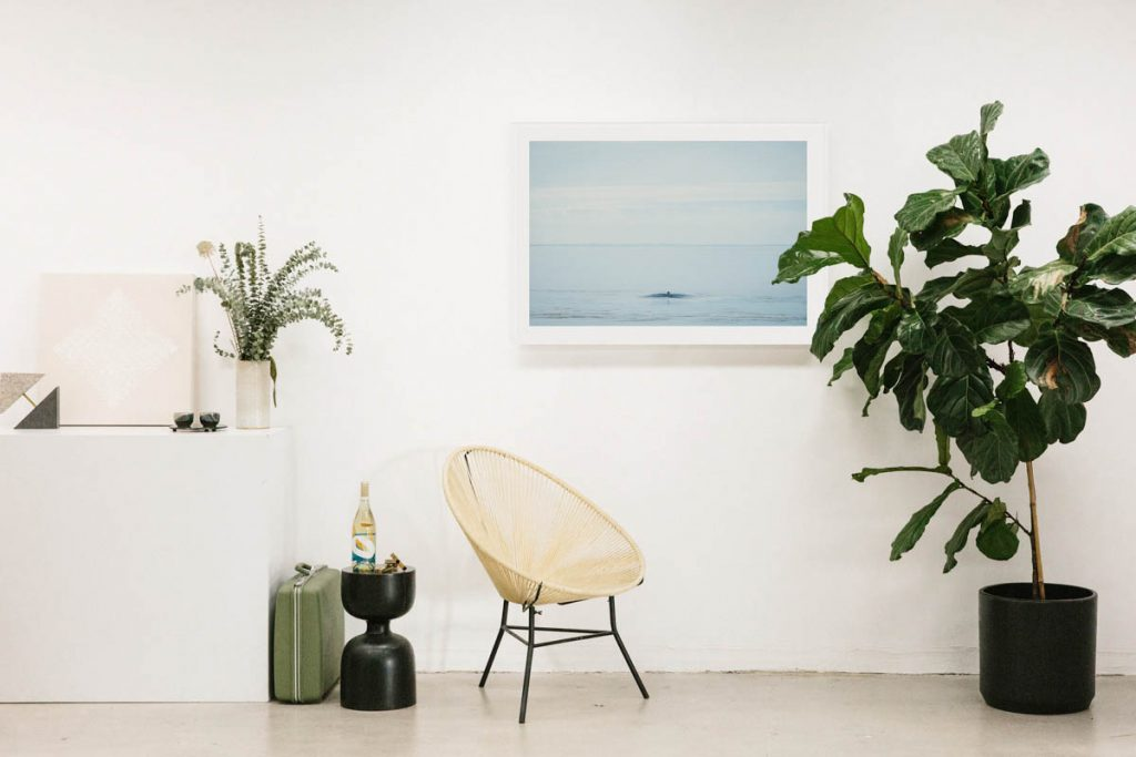 A Studio Visit with Tappan Co-Founder Chelsea Neman Nassib