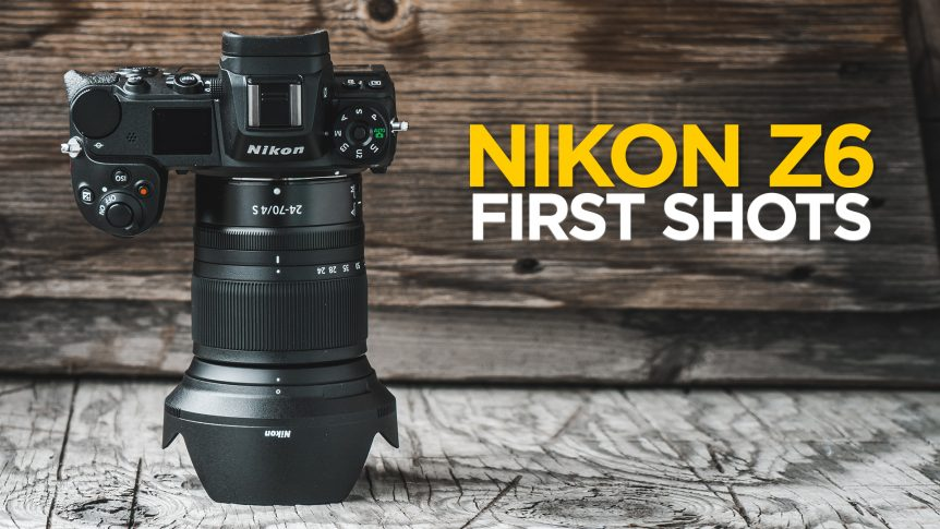 My First Shots with the Nikon Z6 Mirrorless Camera