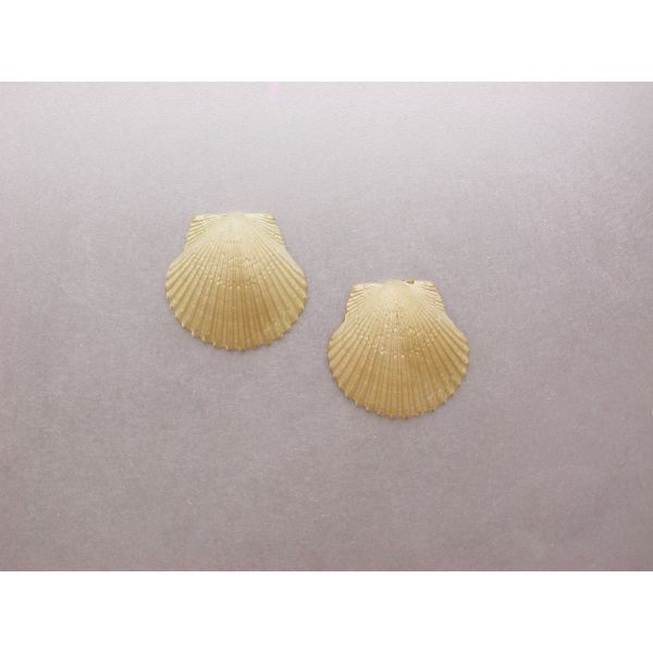 Scallop Shell Earrings SM Post Backs  William Phelps Custom Jeweler Naples, FL