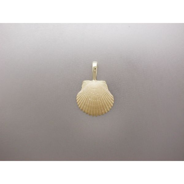 Scallop Shell Pendant Small Plain Bail  William Phelps Custom Jeweler Naples, FL