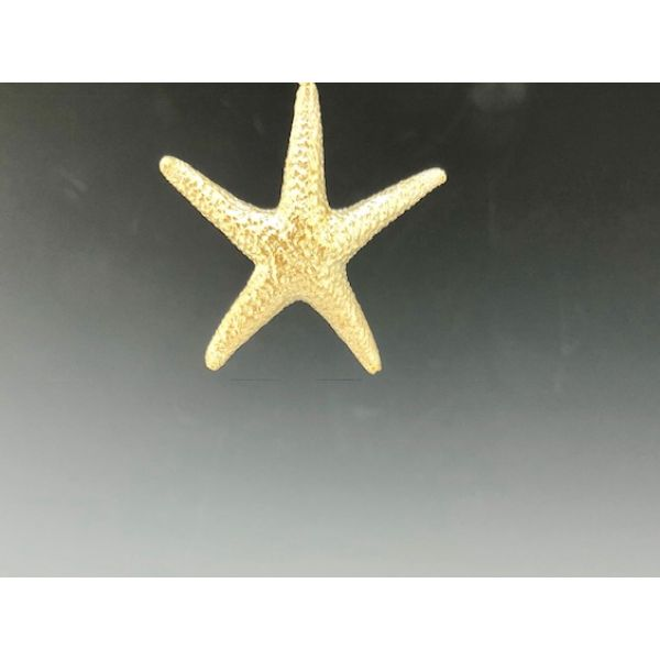 Starfish Pendant 34 mm Plain Bail  William Phelps Custom Jeweler Naples, FL