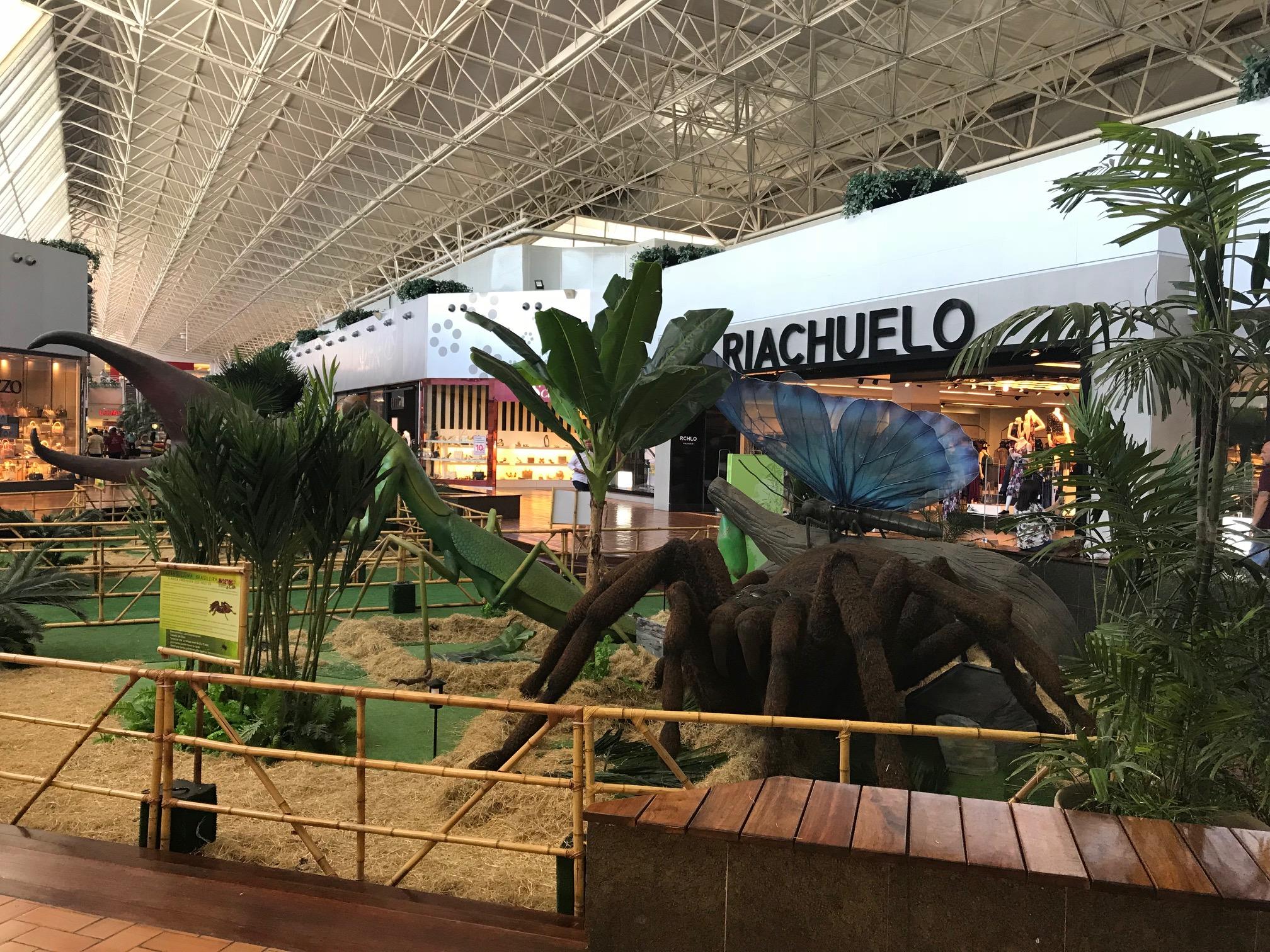 Shopping Iguatemi Fortaleza traz exposição de insetos gigantes 87ef988fb1