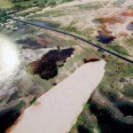 Dunas de Paracuru, a natureza pede passagem