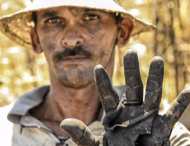 Trabalho escravo continua no Brasil (FOTO: Reprodução TV Jangadeiro)