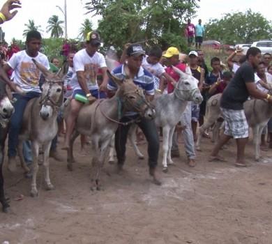 Corrida de jumento é tradição em Itapiúna (FOTO: Reprodução TV Jangadeiro)