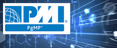 - PMI Program Management Professional Certification