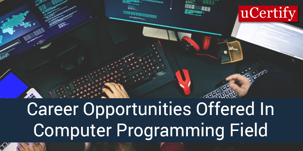 Career Opportunities Offered In Computer Programming Field