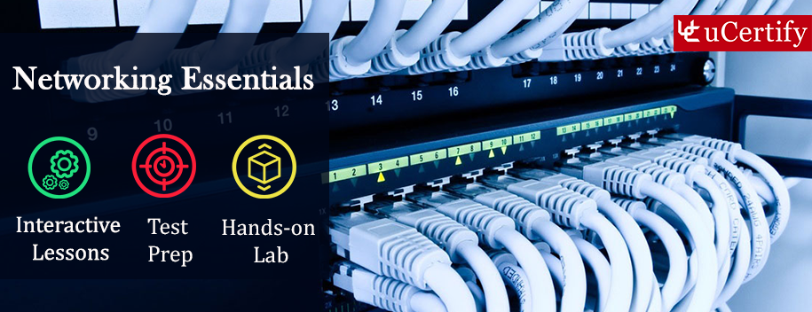 networking-essentials-complete : Pearson - Networking Essentials (Course & lab)