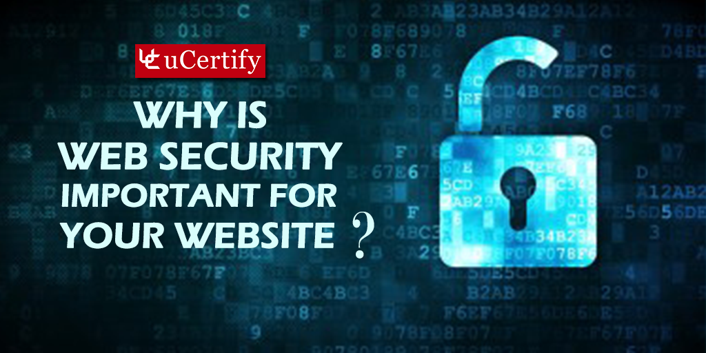 Check Out the Reasons Why Web Security is Important for your Website
