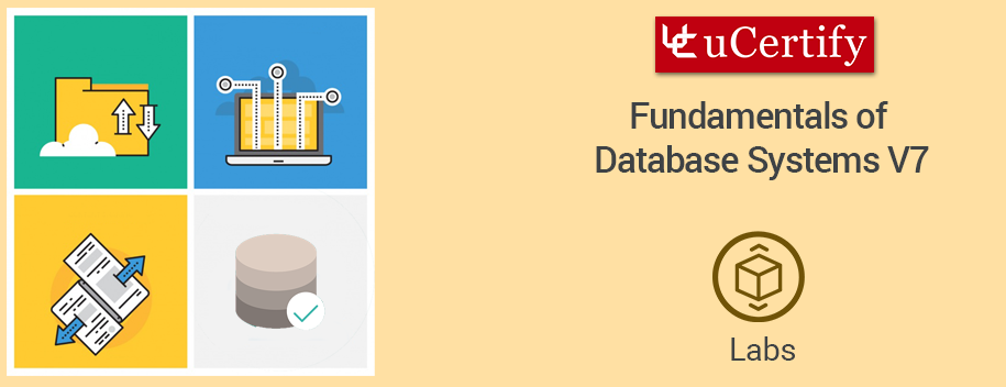 database-systems-lab : Fundamentals of Database Systems V7