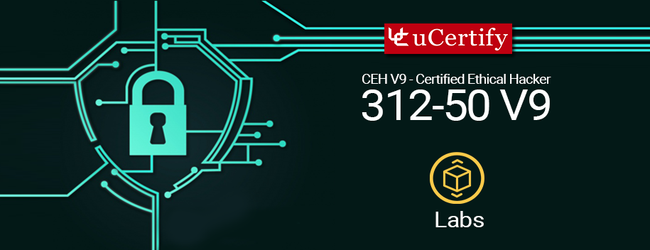 pearson-ceh-v9-lab : Pearson: Certified Ethical Hacker Version 9