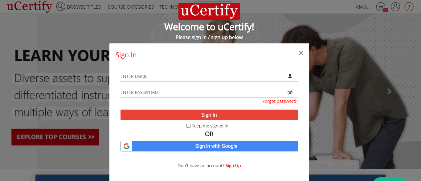 The image is showing Sign In/Sign Up modal box with the options to log in using Google, or email address and password.
