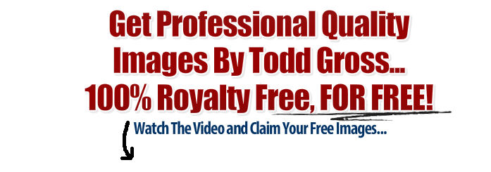 Professional quality images by Todd Gross for free on my behalf.