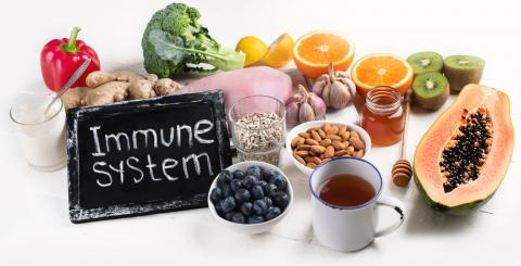 Foods that can boost the immune system