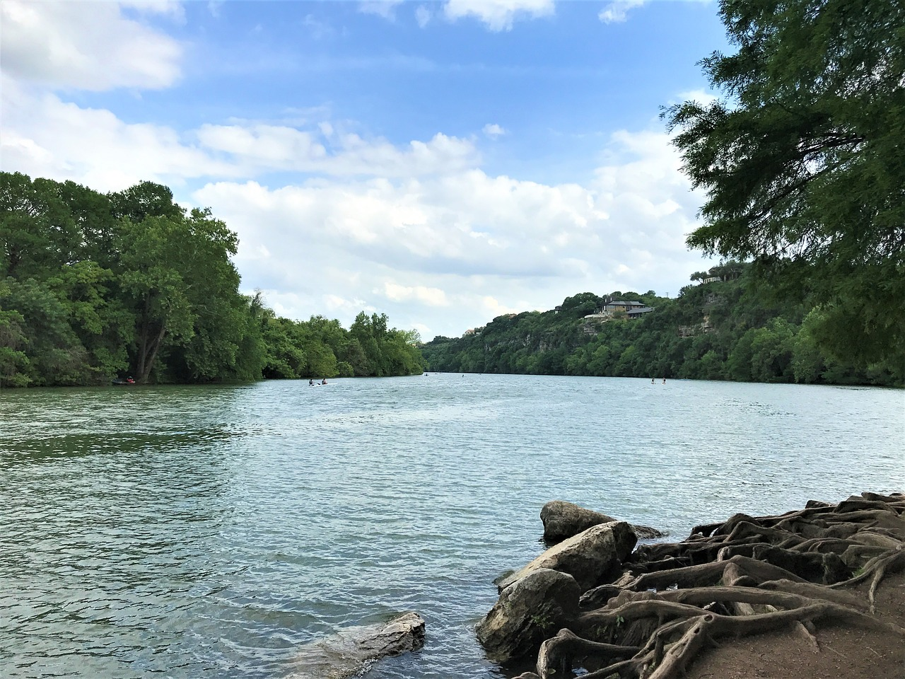 Travel A Guide to Austin, Texas with Your Dog
