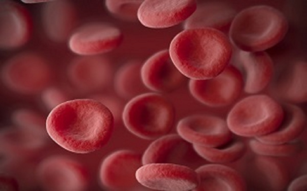 Betrixaban is an anticoagulant medication used for patients with VTE.